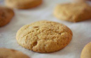 Fat Cat Pumpkin Cookie